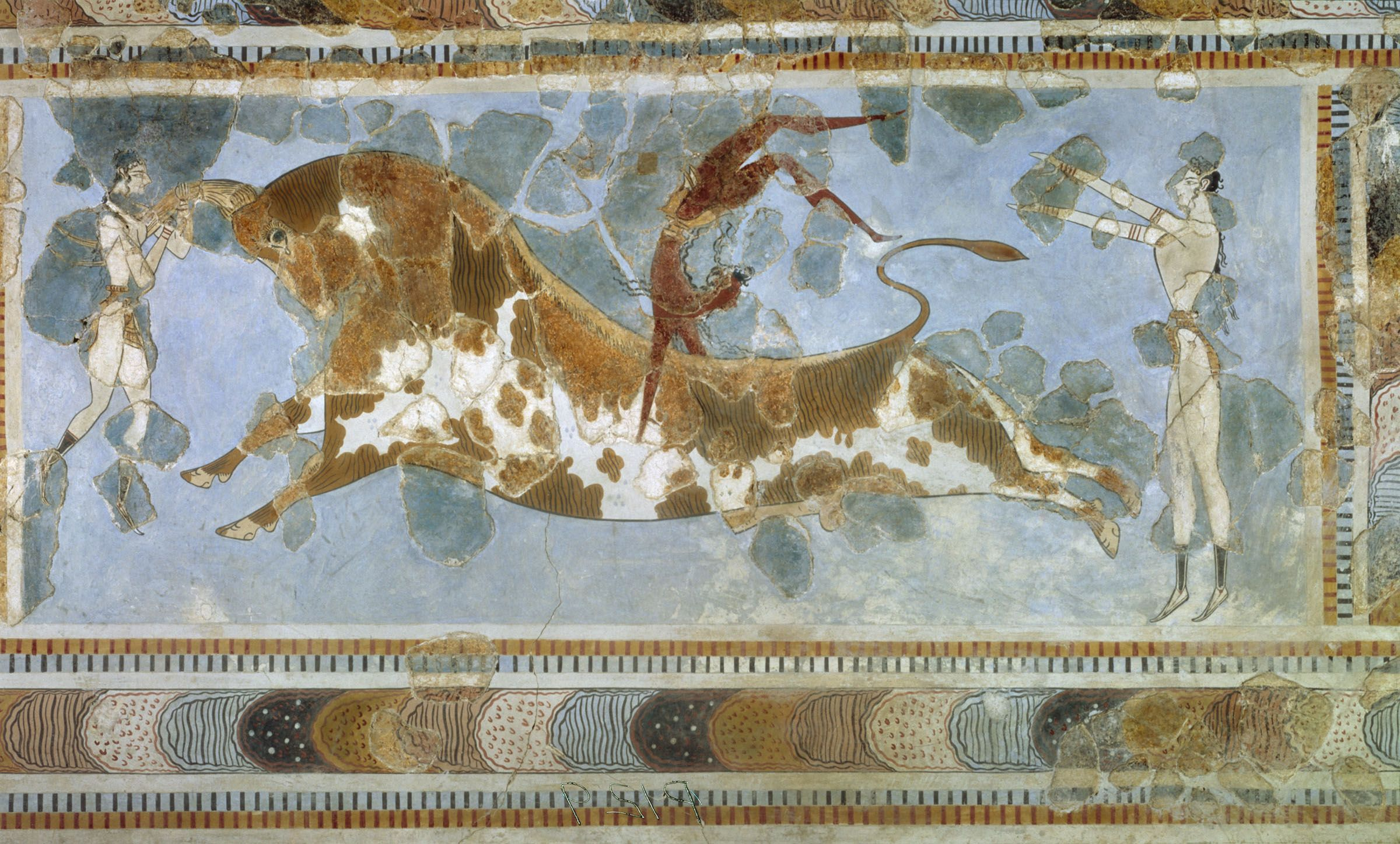 Toreador Fresco